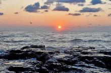 Fekete-tenger